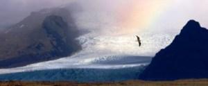 arcticn